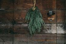 holiday / by Abby Ytzen-Handel