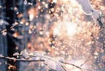 Winter Wonderland / by Jana Hien