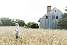 farm / by Abby Ytzen-Handel