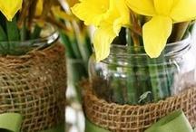 Floral Decor / Vases