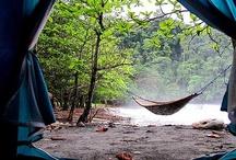 Camping! / by Jackie Brown