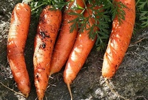 Fruits and Vegetables in Season, 2 / http://therealmyfarm.blogspot.com/2012/02/foods-for-seasons.html