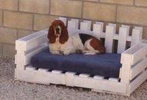 DIY : Pet Care   Dogs / by Ro Xana Star