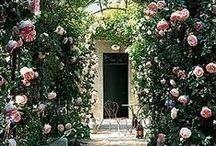 France Trip! / Paris - Provence - Corsica Summer '15