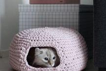 Le tricot chez les animaux / Les animaux adorent le tricot !