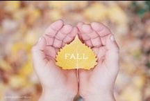 Everything Fall. / Fall recipes, crafts, activities and more. Fall is my favorite season!