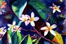 Plumeria / Plumeria flowers are so beautiful and fragrant!  I love to make plumeria leis.  www.kauai-artist.net
