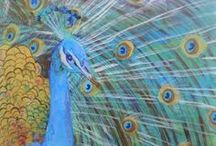 Pretty Peacocks / Lovely Peacock inspiration!  www.kauai-artist.net