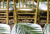Tropical Weddings  / by Alfred Angelo Bridal