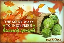 Festive Fall Veggies / by Country Crock