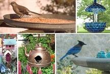 Bird houses / by Desert Gal Treasures