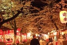 I live in Kyoto / just pravate scenes in Kyoto