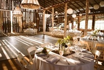 Budget Wedding / Not all weddings have unlimited budgets!  Start here, get creative and save money!