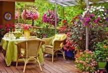 Magical Gardens and Outdoor Entertaining