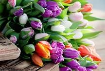 flowers.com