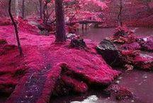 Rose Quartz / Pink inspired....