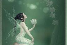 Fairy Garden / by Jenelle Kelly