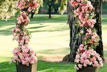 Pink Wedding | Wedding Mall