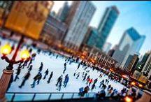Chicago / by Adrienne Cragnotti
