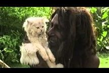 AGHORI.IT (Italy) / Italian Aghori Sadhu site, full of very awesome info and links.