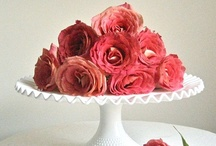 Cake Stand / by Luciana Borges