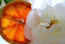 Whitening The Oranges