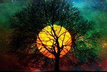 Nature / Wauw!