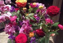 flowers / My favorite!!!❤️
