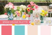Color and Theme Inspiration / Color and Theme ideas for Occasions and Celebrations of all kinds!