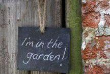 *Outside* / *Dans mon jardin*