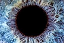 Eye / My lifelong fascination with the human eye.