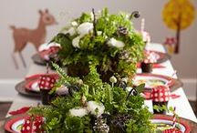 Woodland  and Lumberjack Party Ideas! / Ideas and inspirations for lumberjack Woodland parties!