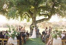Wedding   Ceremony / Traditions, Scripture, Formats, etc