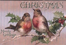 Christmas in all Colors / by Judy Morehouse