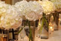 White Hydrangeas / Bridal bouquets and floral decs.
