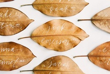 Place Cards & Escort Cards / Help your wedding guests find their seat in style with unique ideas for place cards and escort cards. / by Rebecca Schley