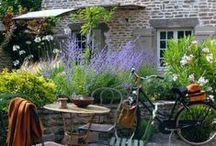 gardening and outdoor decorating