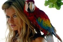 Best Props: Animals / Lions, Tigers, Models... Oh my! / by Sports Illustrated Swimsuit