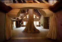 ( Timber Kings ) / by ( Totek )