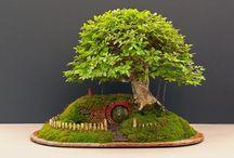 Miniature Living