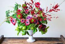 Flower Favorites / by J. Renee