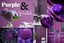 Purple & Violet  / by Purodeco Feng Shui Interior Design