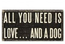 For the Dog  / by Amelia Lane