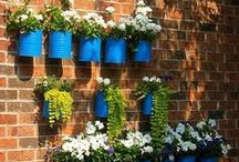 DIY Garden Projects / Looking for some DIY projects for your garden? Check out these ideas! / by Fine Gardening Magazine