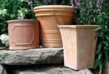 Container Gardening / Are you strained for space? Or just love the ability to change around your garden design? All of these pins have one thing in common...they will give you fantastic ideas for amazing container combinations.  / by Fine Gardening Magazine