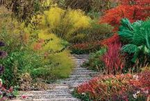 Fall Garden Inspiration / Take a break from your fall garden chores and appreciate the beauty of the autumn garden.