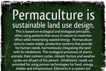 Permaculture / by Kresha @ Nourishing Joy