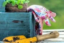 Gardening and Outdoor Spaces / Ideas for home gardening, inside and out!