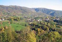Veneto - Vicenza