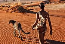 Travel & holidays to Africa / Whether you want canvas, hut or treehouse our luxury african safari holiday portfolio has it all